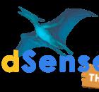 ADSENSEI THEME - Wordpress theme para nichos de google adsense